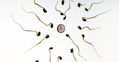 What affects Your Sperm Count?