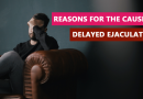 Reasons for the cause of delayed ejaculation